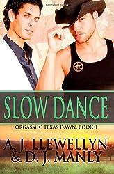 Slow Dance (Orgasmic Texas Dawn) (Volume 3) by Llewellyn, A. J., Manly, D. J. (2014) Paperback