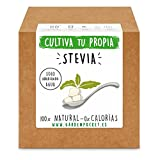 Garden Pocket - Kit cultivo STEVIA
