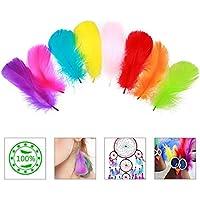 da32ba050433 400pcs pluma de color ZoomSky pluma manualidad de plumaje artesanal para DIY