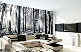 1Wall Nature Forest Wall Mural, Wood, Black and White, 3.15 x 2.32 m