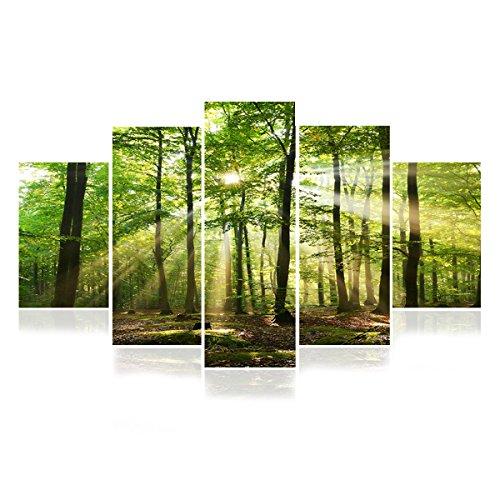 BAYTTER 5-teiliges Bild auf Leinwand Kunstdrucke Wandbilder für Wohnzimmer Schlafzimmer Küche Esszimmer Badezimmer Hotel Sonne Wald See Meeresstrand, ohne Rahmen (Wald)