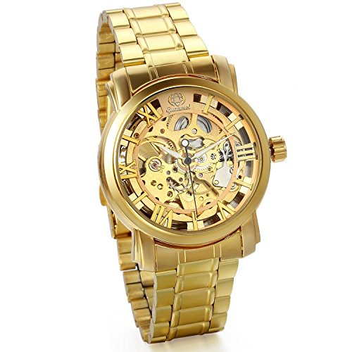 JewelryWe Men's Luxury Watch Hollow Skeleton Transparent Gold Automatic Stainless Steel Wrist Watch 2016 New Year Valentine's Day Gift(Alloy dial)
