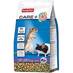 Beaphar-Care + alimentación Super Premium-jerbo