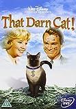 Alles für die Katz kostenlos online stream