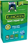 Scotts Miracle-Gro EverGreen Lawn Rep...