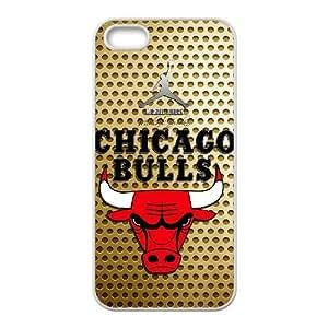 iPhone 5,5S Phone Case Cover Chicago Bulls logo CB7282