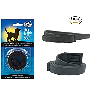 2 x Pet Star Dog Flea & Tick Collars = 8 Months Proctection 11