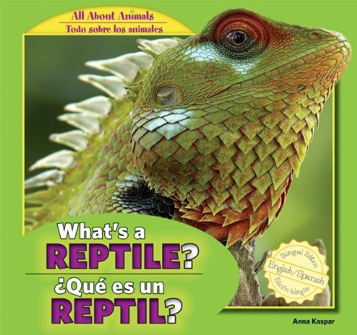 What's a Reptile? / Que Es Un Reptil? (All About Animals / Todo Sobre Los Animales)