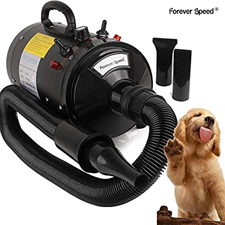 Forever Speed Hundefön Pet Dryer 2400W für Hundepflege Tierfön mit Einstellbarer Windgeschwindigkeit, Hundetrockner mit…