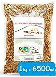 SHF-Natur Mehlwürmer getrocknet • 1kg Premium Futter • Der Gesunde und natürliche Snack für Fische, Vögel, Reptilien, Schildkröten oder Igel