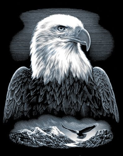 Reeves Bald Eagle Scraperfoil Artwork, Silver by Reeves - Bald Eagle Artwork