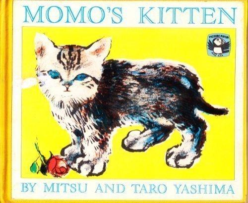Momo's kitten