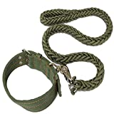 Verstellbar Hundehalsband Hundleine Uebungsleine Gruen Geflochtene 112cm