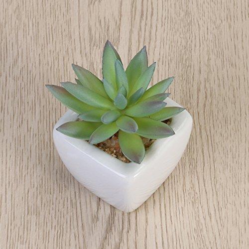 VORCOOL 4PCS Mini Sortiert grüne künstliche Sukkulenten in den quadratischen weißen keramischen Plantern (Alocasia + lachender Lotus + Round Rose + Multi Schicht-Kaktus)
