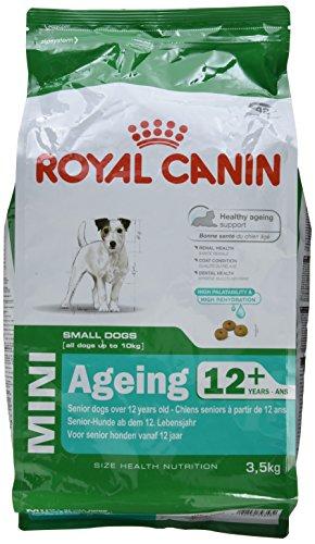 Royal Canin Hundefutter Mini Ageing +12, 3,5 kg, 1er Pack (1 x 3.5 kg) -