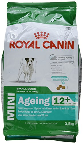 Royal Canin Hundefutter Mini Ageing +12, 3,5 kg, 1er Pack (1 x - Ageing Canin Royal 12