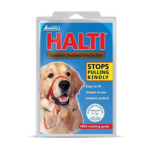 halti-hundehalfter-gepolstert-grosse-3-schwarz