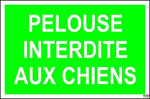 panneau-pelouse-interdite-aux-chiens-300x200mm-rigide