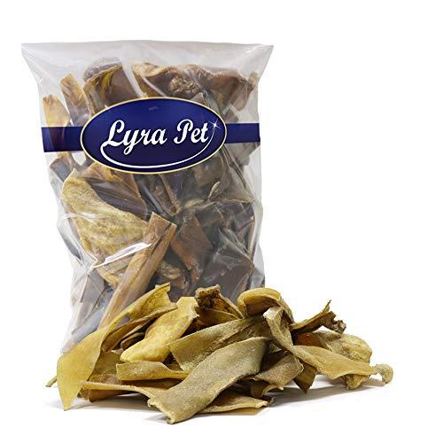 Lyra Pet® 10 kg Rinderkopfhaut Goldbraun Kaustreifen Kausnack Leckerli Hundefutter