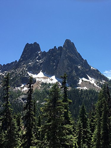 Hiking with Valentine - Washington Pass Overlook Trail, North Cascades National Park [OV] (National Pässe Park)