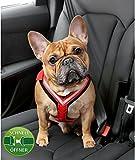 Kleinmetall Allsafe Comfort Hundesicherheitsgurt mit Schnell-Öffner-Verschluss (M)