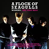 A Flock of Seagulls: Wishing-Very Best of (Audio CD)