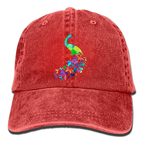 zhong xuyi Peacock Butterfly Tail Hat Adjustable Mens Vintage Cap -