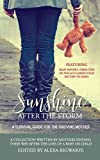Sunshine After the Storm: A Survival Guide for the Grieving Mother
