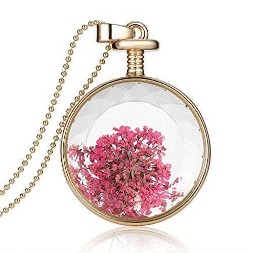 mauve-lavande-ciel-etoile-sec-fleur-collier-bouteille-en-cristal-transparent-collier-pendentif