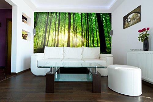 PVC Fototapete – ECO Wandbild Selbstklebende Tapete – 3D Vinyl Wandsticker - Schöner Grüner Wald SW243 XXL (300x210CM)