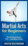 Martial Arts for Beginners: The Kicking Series Part 1 -- The Basic Kicks