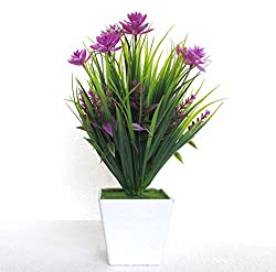 Miracle Retail Bonsai Wild Artificial plant with Pot (Total Height: 26cm, Purple,Green)