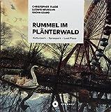 Rummel im Plänterwald: Kulturpark - Spreepark - Lost Place. Das Buch über Berlins fast vergessenen Freizeitpark - Christopher Flade, Ludwig Neumann, Sacha Szabo