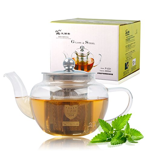 Clear Glass Heat Resistant Infuser Teapot TEA 600ml by WorldWind