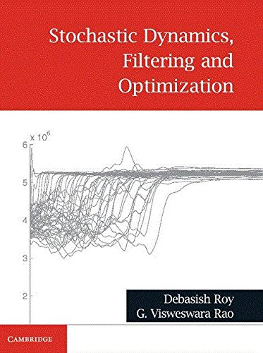 Stochastic Dynamics, Filtering and Optimization