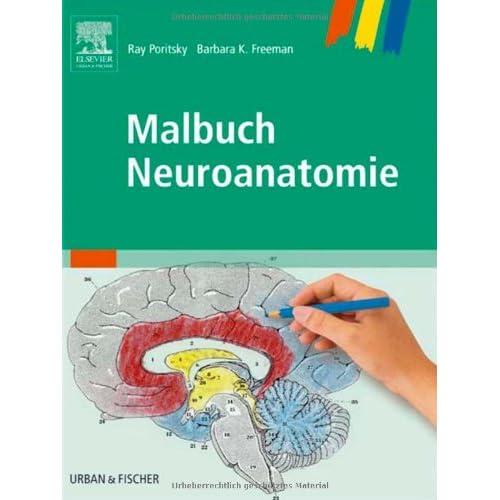 PDF] Malbuch Neuroanatomie KOSTENLOS DOWNLOAD - Bücher Online ...