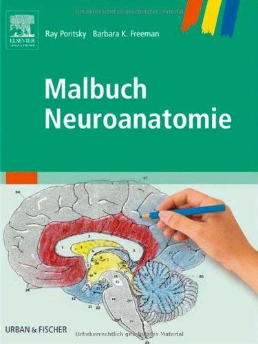 Malbuch Neuroanatomie