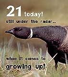 21aujourd'hui, sous le Radar? 21ème anniversaire carte par Jelly Bean...