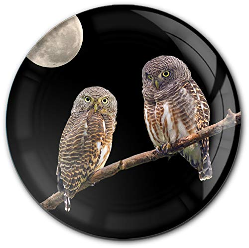 metALUm runder Acrylmagnet mit starkem Neodym - Magnet Eulen   Raubtiere   Wildvögel #1301181