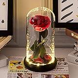 Kit de Rosas La Bella y la Bestia, Flor eterna y luz LED con pétalos caídos en la cúpula de...