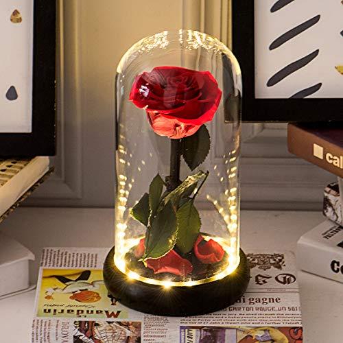 Kit de Rosas La Bella y la Bestia, Flor eterna y luz LED con pétalos caídos en la cúpula de Vidrio en la Base de Madera para la decoración del hogar Boda Cumpleaños Día de la Madre Aniversario