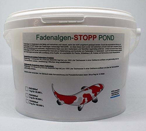 WFW wasserflora 1 kg Fadenalgen-Stopp Pond - Granulat Gegen Fadenalgen im Gartenteich, für 30.000 Liter Teich-Wasser -