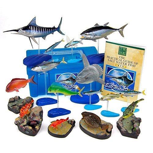 colorata-salt-water-fish-solid-illustrated-book-real-figure-box-japan-import