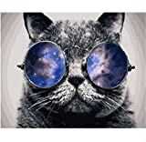 Myytcy Mit Rahmen Malen Nach Zahlen Wanddekor DIY Bild Ölgemälde Auf Leinwand Für Wohnkultur Schwarze Katze Mit Brille 40x50cm
