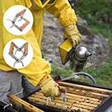 TianranRT★ Cassetta per nidi Strumento per apicoltura in acciaio inox Attrezzatura per nidi di apicoltura Attrezzatura per nidi d'ape,Argento(13X9.5)