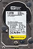 WD1001FYYG-01SL3W0, DCM HBRCNVJAB, Western Digital 1TB SAS 3.5 Hard Drive