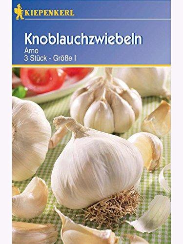 Produkt-Bild: Knoblauch-Zwiebeln Arno weiß 3 Knollen