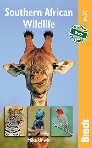 Southern African Wildlife (Bradt Wildlife Guides) -