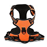 Pettom Adjustable Soft Padded No Pull Pet Dog Harness with Heavy Duty Handle for Dog Training or Walking - Big Dogs Assistance Chest from 49-91cm Vary from Size S-M-L