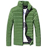 Riou Herren Winterjacke Baumwolle Stehkragen Zipper Warme Winter Dicken Mantel Jacke Übergangsjacke Steppjacke,Männerjacke Daunenjacke Windjacke Für Männer (2XL, Grün)